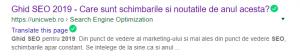 Cum arata Google un meta titlu